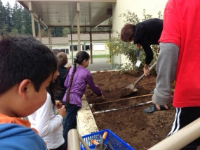 Grade 3 students planting bulbs.