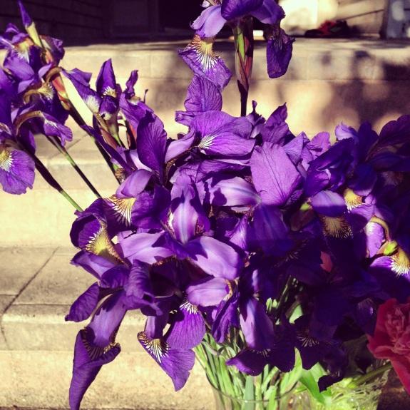 Beautiful iris for out Parent Appreciation Tea.