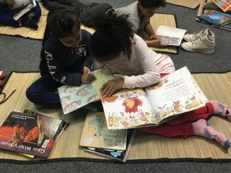 Literacy Learning