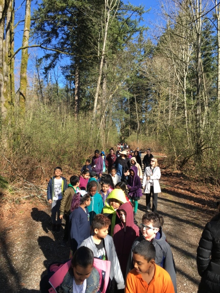School Wide Nature Walk